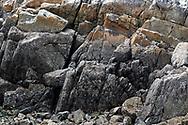 The Rocky Intertidal Zone at Burgoyne Bay Provincial Park on Salt Spring Island, British Columbia, Canada