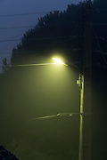street lights in fog