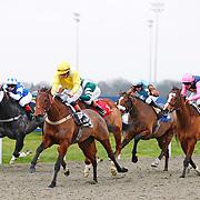 Kempton 7th January 2013