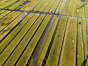 Nederland, Zuid-Holland, Lekkerkerk, 20-02-2012; Polder Schuwacht met hoogspanningsmasten..Polder and high tension cables..luchtfoto (toeslag), aerial photo (additional fee required).copyright foto/photo Siebe Swart