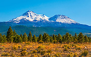 Mount Shasta During Summer