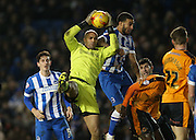 Wolverhampton Wanderers goalkeeper Carl Ikeme (1) claims a cross during the Sky Bet Championship match between Brighton and Hove Albion and Wolverhampton Wanderers at the American Express Community Stadium, Brighton and Hove, England on 1 January 2016.