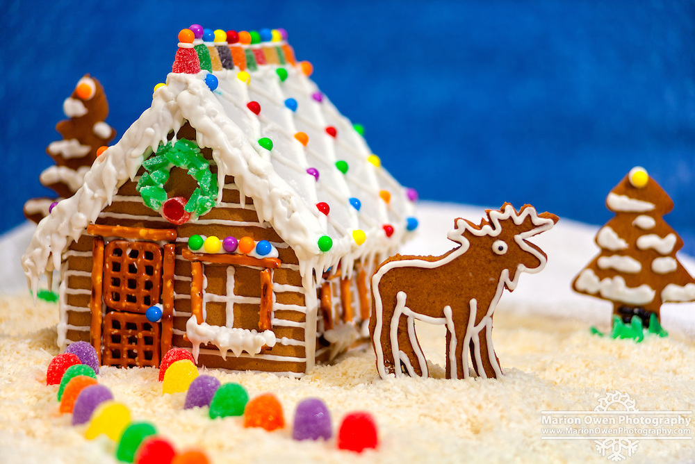 "Close up of log cabin gingerbread house in a snowy ""coconut"" scene including a gingerbread cookie moose and trees; gumdrops line the path leading to the front door; A deep blue background simulates a night sky."