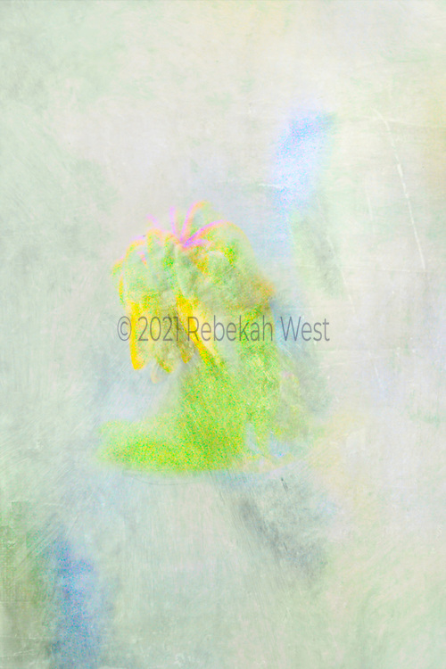 luminous, iridescent abstract flower shapes in vertical field of grey gray greenery, bright spring green, bright blue accents, pink stems, bright pastel yellow closed flower petal shapes, greenery, flower art, feminine, high resolution, licensing, iridescent, vertical, 2275 x 3413