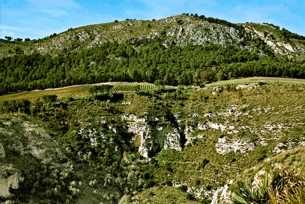 Segesta: View from behind the ancient Elymian temple itself into the quarry from which its building rocks were dug out.  It is a vast hole.  Beyond, farm fields, pine forest, and a high hill.