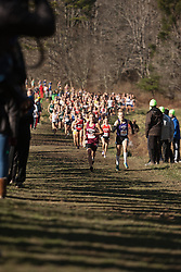 New England High School XC Championship, Purrier, Brown lead pack