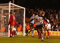 Fotball<br /> Premier League 2004/05<br /> Fulham v West Bronwich Albions<br /> 16. januar 2005<br /> Foto: Digitalsport<br /> NORWAY ONLY<br /> Fulham's Papa Bouba Diop celebrates his goal