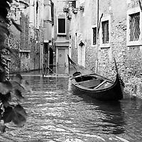 Venice Fine Arts Prints