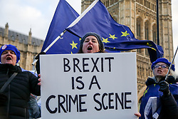 November 19, 2018 - London, United Kingdom - Pro-EU protester seen holding a placard during the protest..Pro-EU protesters from SODEM (Stand in Defiance European Movement) including a large dinosaur demonstrates with their placards and European Union flags outside the Palace of Westminster in central London ahead of the crucial week of Brexit negotiations as Prime Minister Theresa May prepares to meet Chief negotiator Michel Barnier later this week to discuss the withdrawal deal. (Credit Image: © Dinendra Haria/SOPA Images via ZUMA Wire)