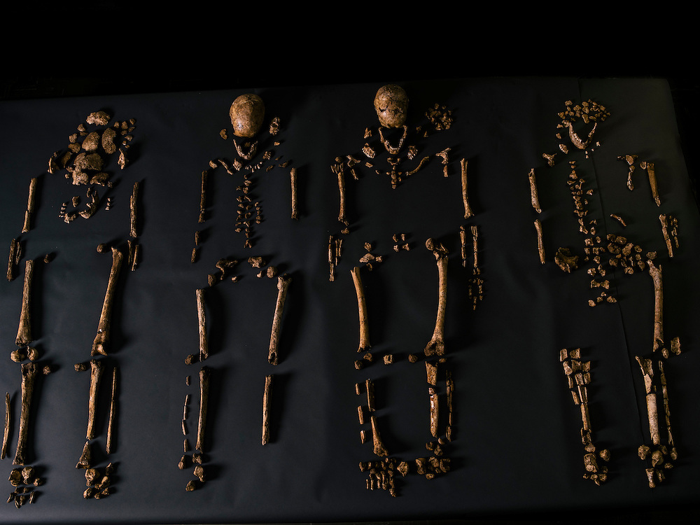 """The four remains of bodies discovered in what explorer John Smith called the """"golden church,"""" the first Protestant church in the Americas, at the historic fort and settlement in Jamestown, Va. The Jamestown Rediscovery Team, along with anthropologists from the Smithsonian Institution, have recently identified the remains."""