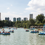 Visitors use the padlde boats on the lake in Basque de Chapultepec, a large and popular public park in the center of Mexico City.