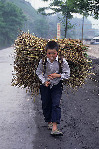 China, People, Young boy hauling wheat on back. Shanghai.
