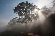 Piranga_MG, 04 de Julho de 2007.<br /> <br /> Projeto Beira de Estrada<br /> <br /> Rota Zona da Mata e Regiao Central<br /> <br /> Na foto, estrada de terra.<br /> <br /> Foto: LEO DRUMOND / NITRO