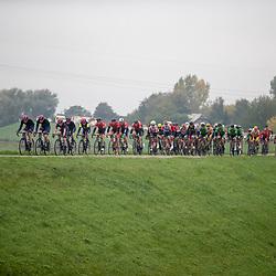 20-10-2019: Wielrennen: OlympiaTour: Tiel<br />peloton op de dijk langs de Waal bij Ophemert