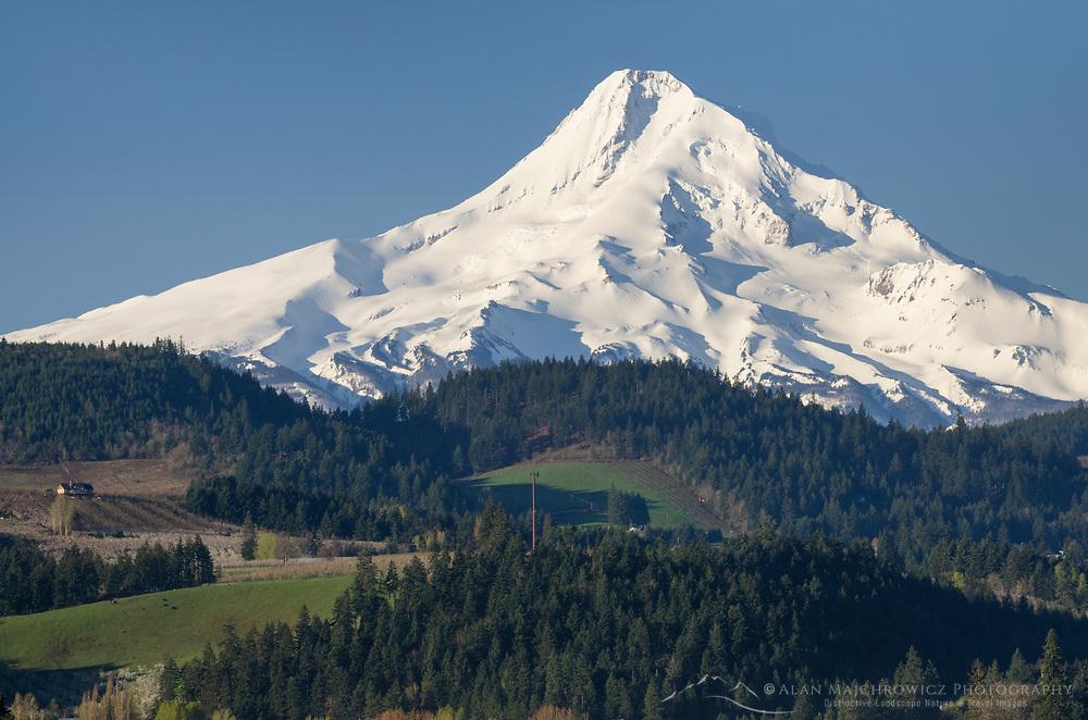 Mount Hood Oregon, Cascade Range stratovolcano elevation 11,249 ft (3,429 m), seen from Hood River Valley, Oregon