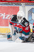 KELOWNA, CANADA - NOVEMBER 26: Michael Herringer #30 of the Kelowna Rockets covers the puck against the Regina Pats on November 26, 2016 at Prospera Place in Kelowna, British Columbia, Canada.  (Photo by Marissa Baecker/Shoot the Breeze)  *** Local Caption ***