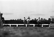 06/03/1964<br /> 03/06/1964<br /> 06 March 1964<br /> View of horse racing at Leopardstown Racecourse, Co. Dublin.
