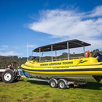 Ocean Leopard Tours