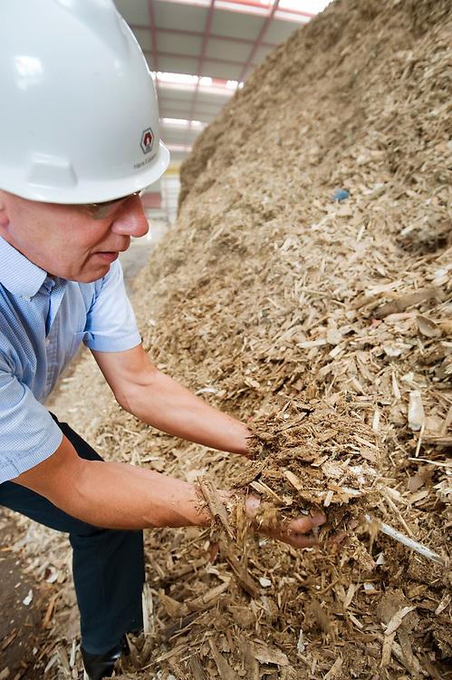 Nederland, Alkmaar, 14 aug 2008.In de hal met stookvoorraad houtsnippers voor de biomassa centrale, laat een medewerker de houtsnippers van dichtbij zien. (Officieel geopend in mei 2008).Biomassa centrale verstookt houtsnippers van snoei en oud hout van de sloop en ander resthoutmateriaal. Naast de centrale staat een grote afvalverbrandingsinstallatie, die er al veel langer was. .Foto (c) Michiel Wijnbergh