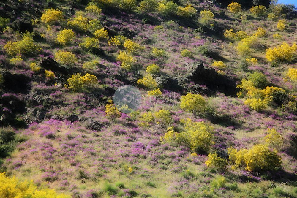 Laderas del valle Najerilla. La Rioja ©Daniel Acevedo / PILAR REVILLA