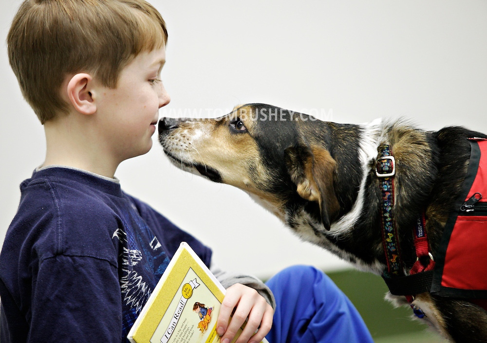 Reading Education Assistance Dog (READ)  dog Milo stares at Jack Byrne, 9, before Jack starts reading at the Cornwall Library on Friday, Feb.  25, 2011.