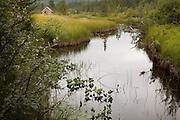 Liten elv ved Litj-Ånvatnet. Selbu i Sør-Trøndelag.