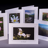 The NH Woodlands collection includes 6 greeting cards, one of each design:  pink lady's slipper, trillium, winter in the mountains, small whorled pogonia, and the WMNF Pemigewasset River.<br />