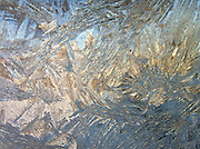 Ice forms on window during winter in Wisconsin. Taken with iPhone 4. (Photo by Sam Lucero)