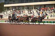 IJsbrand Chardon, (NED), Bravour, Danbrozie, Don Marcell, Winston E, Zepp - Driving dressage - Alltech FEI World Equestrian Games™ 2014 - Normandy, France.<br /> © Hippo Foto Team - Dirk Caremans<br /> 04/09/14