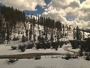 Amtrak Zephyr landscape, winter snow, pines and stream