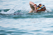 WUNRAM Finnia GER <br /> Women's 10Km <br /> Open Water Swimming Balatonfured<br /> Day 03  16/07/2017 <br /> XVII FINA World Championships Aquatics<br /> Lake Balaton Budapest Hungary  <br /> Photo Andrea Staccioli/Deepbluemedia/Insidefoto