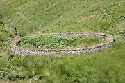 Circular stone Sheepfold, Scabcleuch Burn, Southern Uplands, Scotland