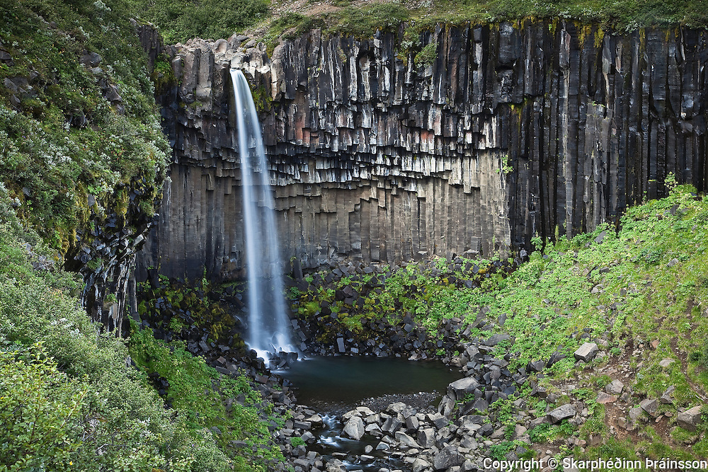 Svartifoss (Black Fall) in Skaftafell National Park, south Iceland