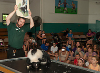 Jeremy Phillips of the Squam Lakes Science Center presents a striped skunk to the children gathered for Laconia Library's Summer Reading program event at the Laconia Community Center Wednesday afternoon.  (Karen Bobotas/for the Laconia Daily Sun)