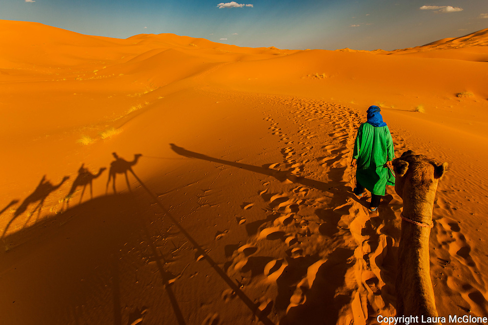 Moroccan Desert Camel Trek and Shadows, Merzouga, Morocco