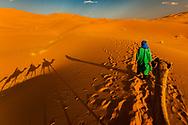 Moroccan Desert Camel Trek and Shadows, Merzouga, Morocco