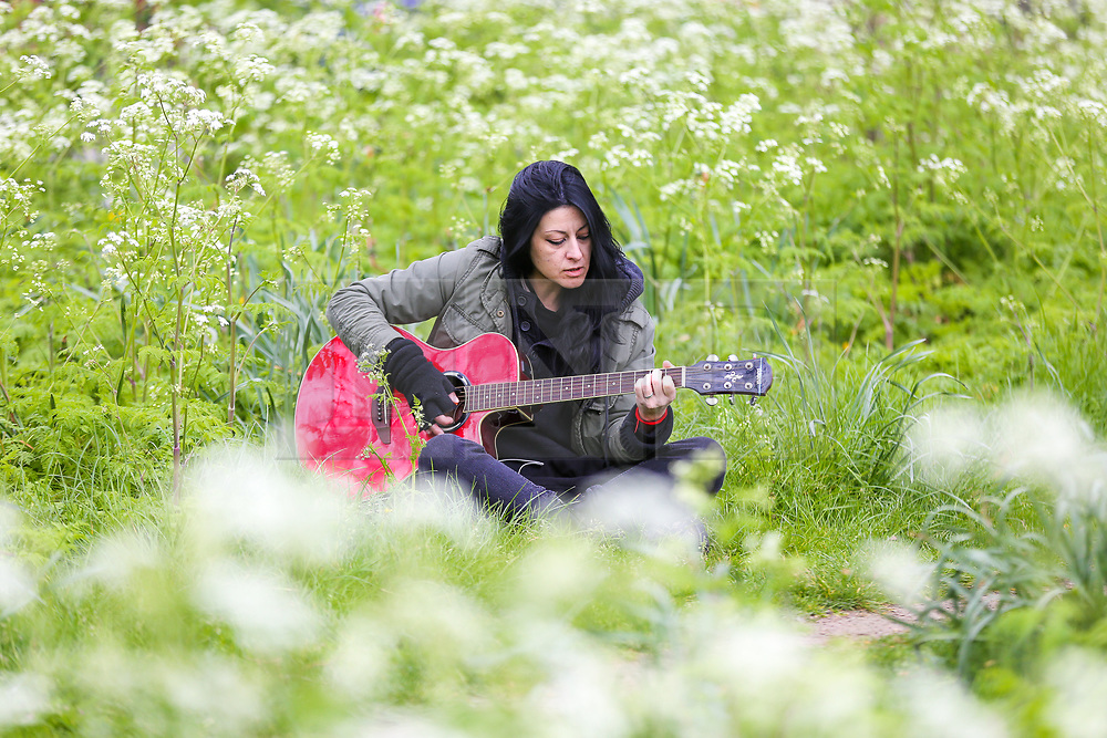 © Licensed to London News Pictures. 12/04/2019. London, UK. Elizabeth playing a guitar in a north London park covered in white spring flowers. Photo credit: Dinendra Haria/LNP