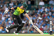 SYDNEY - NOVEMBER 25: Australian player D'Arcy Short just makes his run at the International Gillette T20 cricket match between Australia and India at The Sydney Cricket Ground in NSW on November 25, 2018. (Photo by Speed Media/Icon Sportswire)