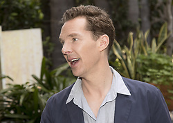 April 25, 2018 - Hollywood, CA, USA - Benedict Cumberbatch stars in TV series Patrick Melrose (Showtime) and Avengers: Infinity Wars (Credit Image: © Armando Gallo via ZUMA Studio)