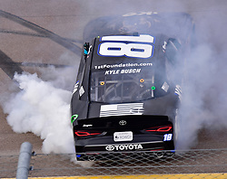 March 9, 2019 - Phoenix, Arizona, U.S. - PHOENIX, AZ - MARCH 09:  Kyle Busch (18) Extreme Concepts/iK9 Toyota burns down the tires after winning  the NASCAR Xfinity iK9 Service Dog 200 race on March 09, 2019 at ISM Raceway in Phoenix, AZ.  (Photo by Lyle Setter/Icon Sportswire) (Credit Image: © Lyle Setter/Icon SMI via ZUMA Press)