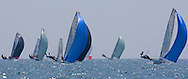 The International 14 fleet sail downwind on the second leg of the 2008 POW Race at Weymouth