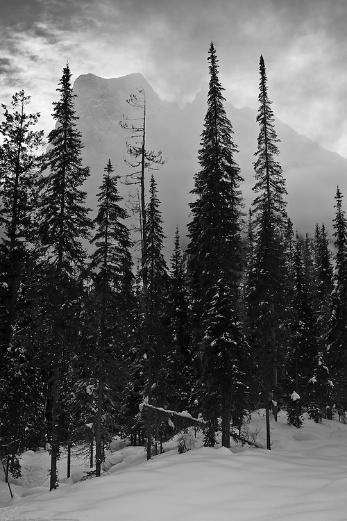 Snowshoeing at Emerald Lake, February 2012
