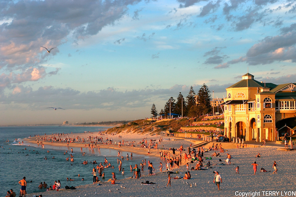 A perfect summer night on Cottesloe Beach with many people enjoying a swim and the sunset after a hot summers day.