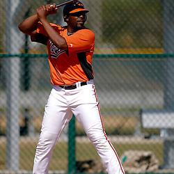 February 21, 2011; Sarasota, FL, USA; Baltimore Orioles designated hitter Vladimir Guerrero (27) at bat during spring training at Ed Smith Stadium.  Mandatory Credit: Derick E. Hingle-US PRESSWIRE