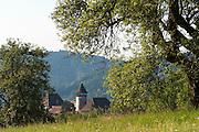 Burg Rannariedl an der Donau, Oberösterreich, Österreich | castle Rannariedl, Danube, Upper Austria, Austria