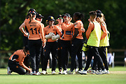 Southern Vipers celebrate the wicket of Sarah Taylor during the Women's Cricket Super League match between Southern Vipers and Surrey Stars at Arundel Castle, Arundel, United Kingdom on 18 August 2019.