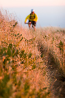 Young man biking near Bolinas Ridge; Mt. Tamalpais State Park. Golden Gate National Recreation Area. San Francisco,  CA.