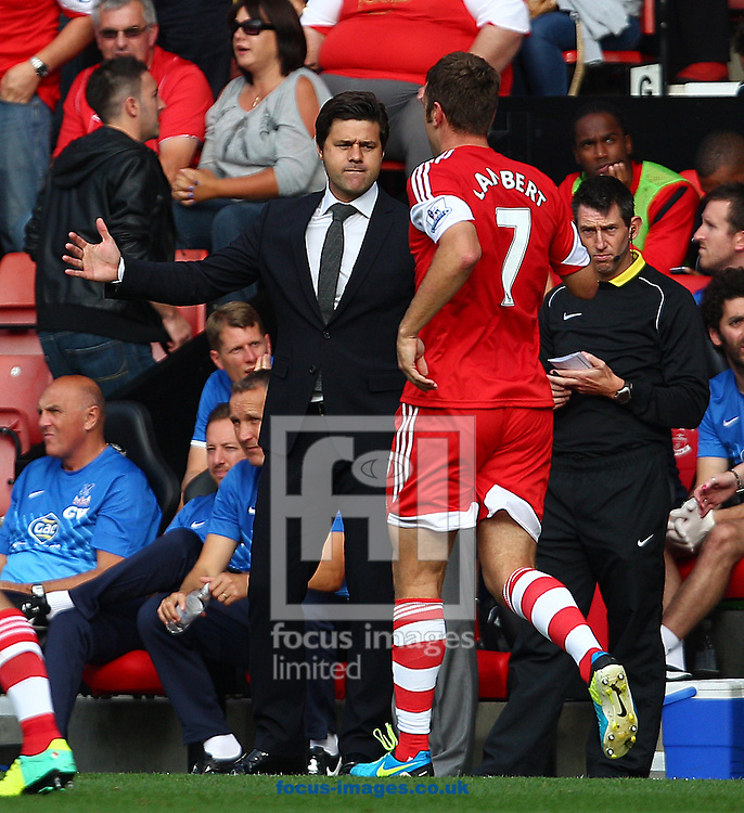 Picture by Paul Terry/Focus Images Ltd +44 7545 642257<br /> 28/09/2013<br /> Rickie Lambert ( R ) of Southampton celebrates with manager Mauricio Pochettino, after scoring to make it 2-0 during the Barclays Premier League match at the St Mary's Stadium, Southampton.