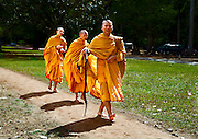 The lead monk, older than the other two, wields a silver-headed staff, while his two followers walk respectfully behind.  The lead monk looks authoritatively at the camera; the other two pretend not to notice.