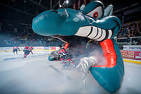 KELOWNA, CANADA - DECEMBER 6: Tate Coughlin #18 of Kelowna Rockets enters the ice against the Prince Albert Raiders on December 6, 2014 at Prospera Place in Kelowna, British Columbia, Canada.  (Photo by Marissa Baecker/Shoot the Breeze)  *** Local Caption *** Tate Coughlin;